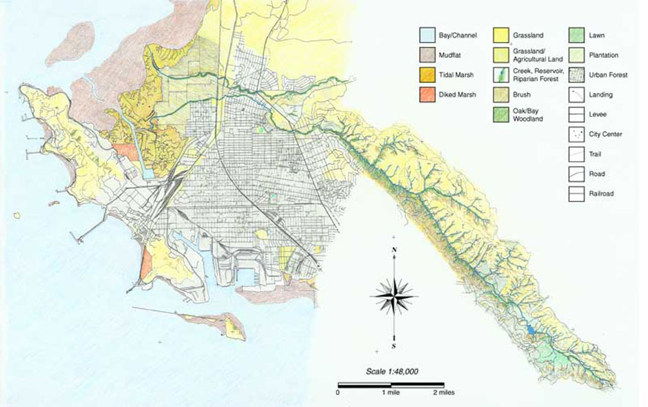 During World War II Richmond's population quadrupled as immigrants flocked to the area to work in the Kaiser Shipyards. Development quickly followed and by 1960 much of the watershed had been altered. This map from 1950 shows the rapid growth along the coast, with new railways, streets, and docks to support industry.