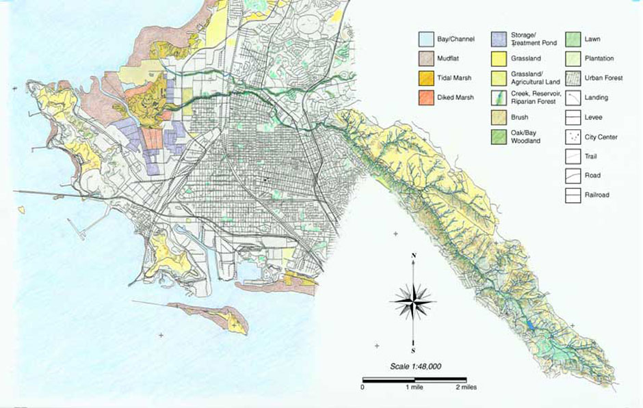 Today organizations like the San Francisco Estuary Institute, the Heritage Foundation, The Watershed Project and the Flood Control Department are working to better understand the historical ecology of the area. The information they find will help them plan future development, conservation and flood control projects.